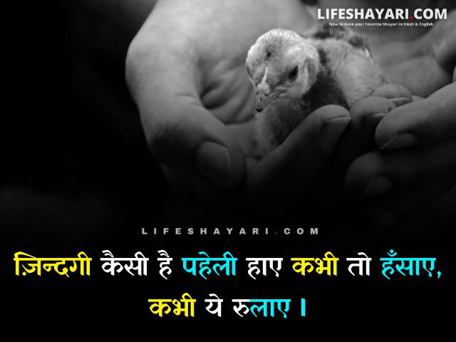Shero Shayari On life